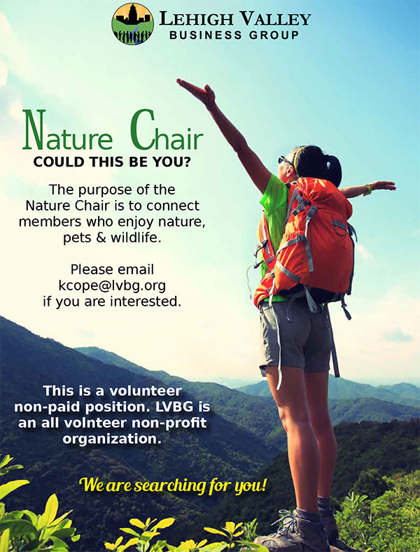 Nature Chair