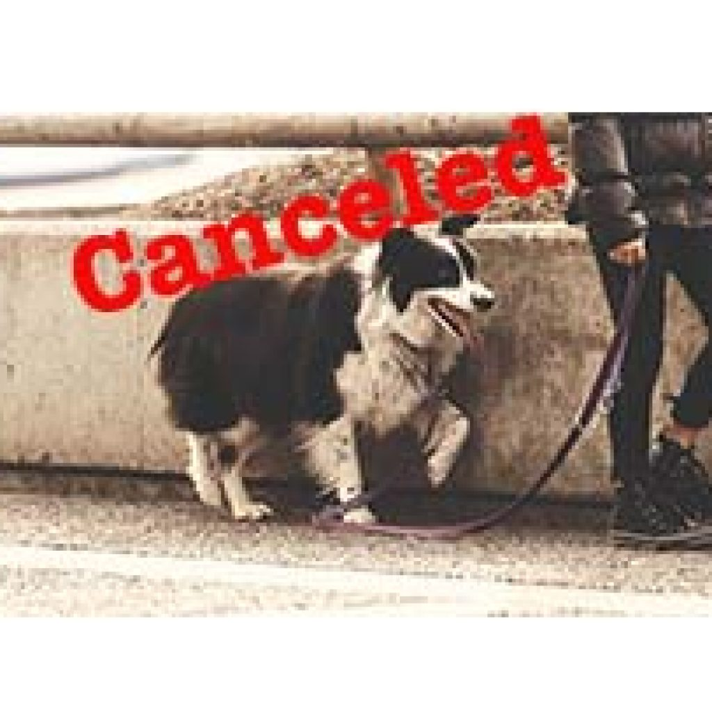 dog-walk-canceled